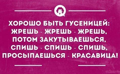 http://sf.uploads.ru/t/fJEN2.jpg