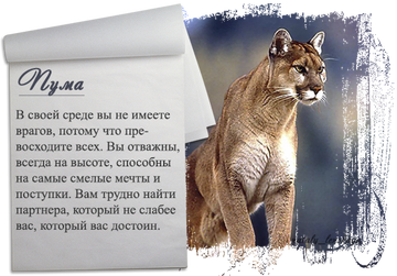 http://sf.uploads.ru/t/fpVan.png