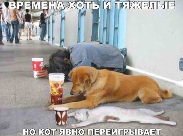 http://sf.uploads.ru/t/h7pXP.jpg