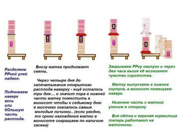 http://sf.uploads.ru/t/hiNxb.jpg