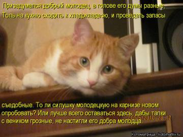 http://sf.uploads.ru/t/igE3S.jpg