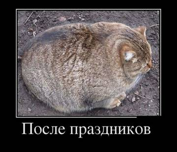 http://sf.uploads.ru/t/incop.jpg