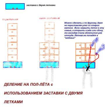 http://sf.uploads.ru/t/lw50T.jpg
