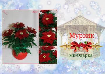 http://sf.uploads.ru/t/miAG0.jpg