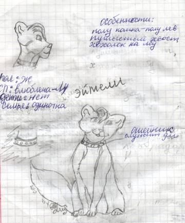 http://sf.uploads.ru/t/mkfYA.jpg