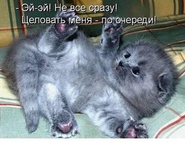 http://sf.uploads.ru/t/mqTO4.jpg