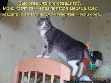 http://sf.uploads.ru/t/oPlbw.jpg