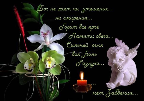 http://sf.uploads.ru/t/oWZdX.jpg