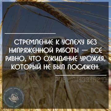 http://sf.uploads.ru/t/oe7zj.jpg