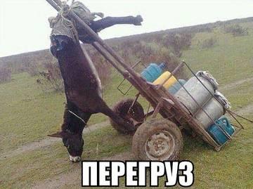 http://sf.uploads.ru/t/qlEs8.jpg