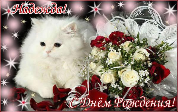 http://sf.uploads.ru/t/rNQuo.jpg