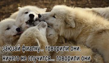 http://sf.uploads.ru/t/rb5Ld.png