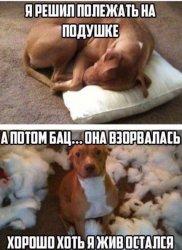 http://sf.uploads.ru/t/rc8aW.jpg