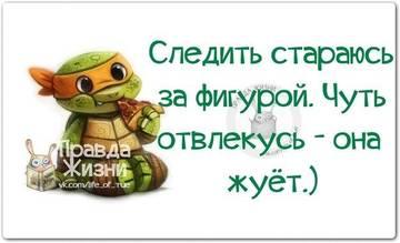 http://sf.uploads.ru/t/rtZJ5.jpg