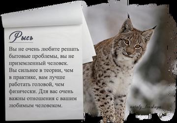 http://sf.uploads.ru/t/sTgQx.png