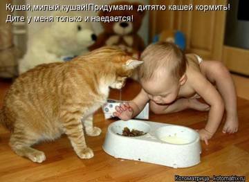 http://sf.uploads.ru/t/uVjMk.jpg