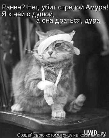http://sf.uploads.ru/t/ujNRe.jpg