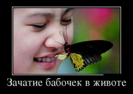 http://sf.uploads.ru/t/wzgRT.jpg