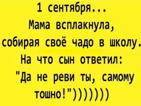 http://sf.uploads.ru/t/x3Pqi.jpg