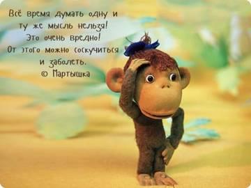 http://sf.uploads.ru/t/xN8oi.jpg