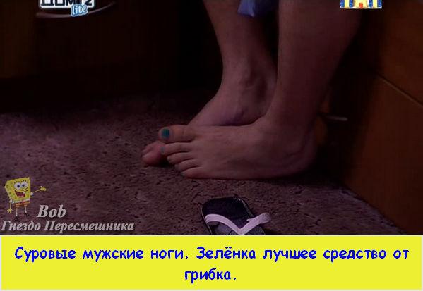 http://sf.uploads.ru/t/yD1H6.jpg