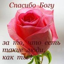http://sf.uploads.ru/t/yDfqS.jpg