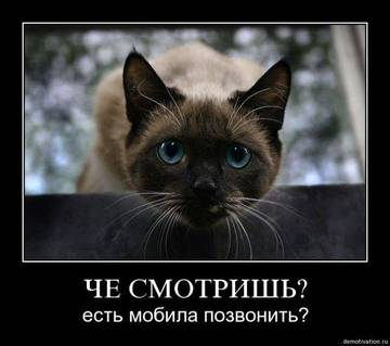 http://sf.uploads.ru/t/yv6ik.jpg