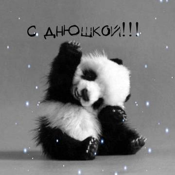 http://sf.uploads.ru/t/z4ctr.jpg