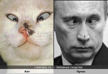 http://sf.uploads.ru/t9eyo.jpg