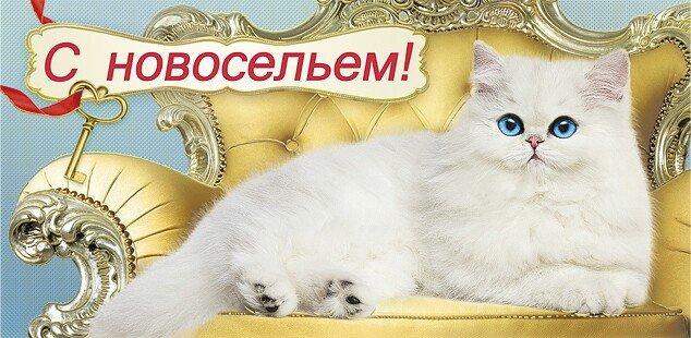 http://sf.uploads.ru/udUMW.jpg