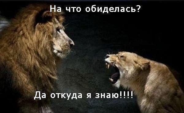 http://sf.uploads.ru/v6BVc.jpg