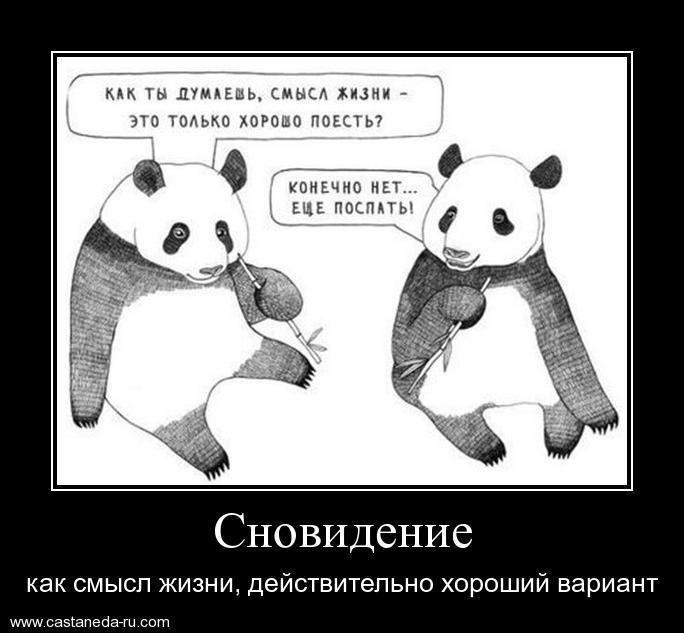 http://sf.uploads.ru/vI3N4.jpg