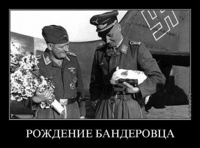 http://sf.uploads.ru/wFGux.jpg