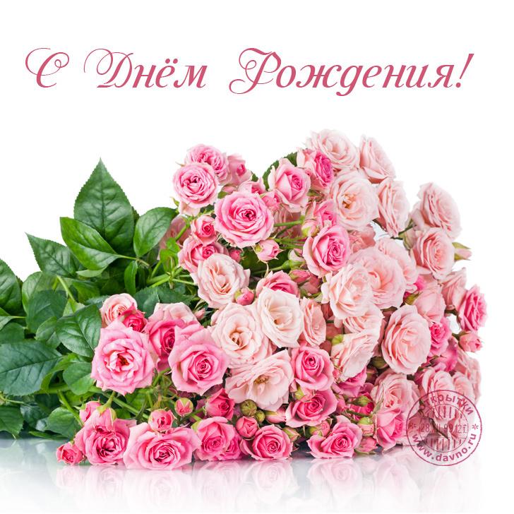 http://sf.uploads.ru/wx0lX.jpg