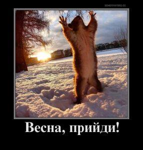http://sf.uploads.ru/xISGU.jpg