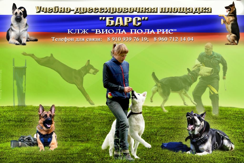 http://sf.uploads.ru/zxnqW.jpg