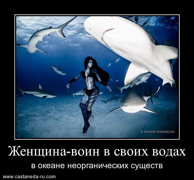 http://sf.uploads.ru/Bf9wp.jpg