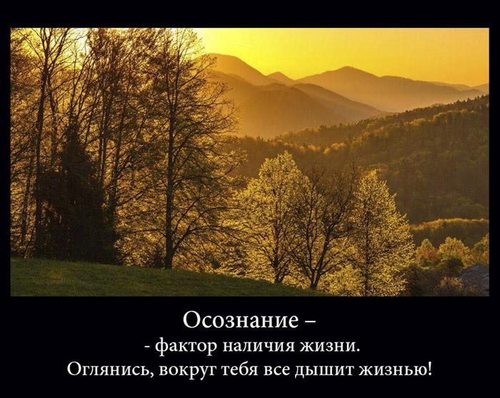 http://sf.uploads.ru/UxH5O.jpg