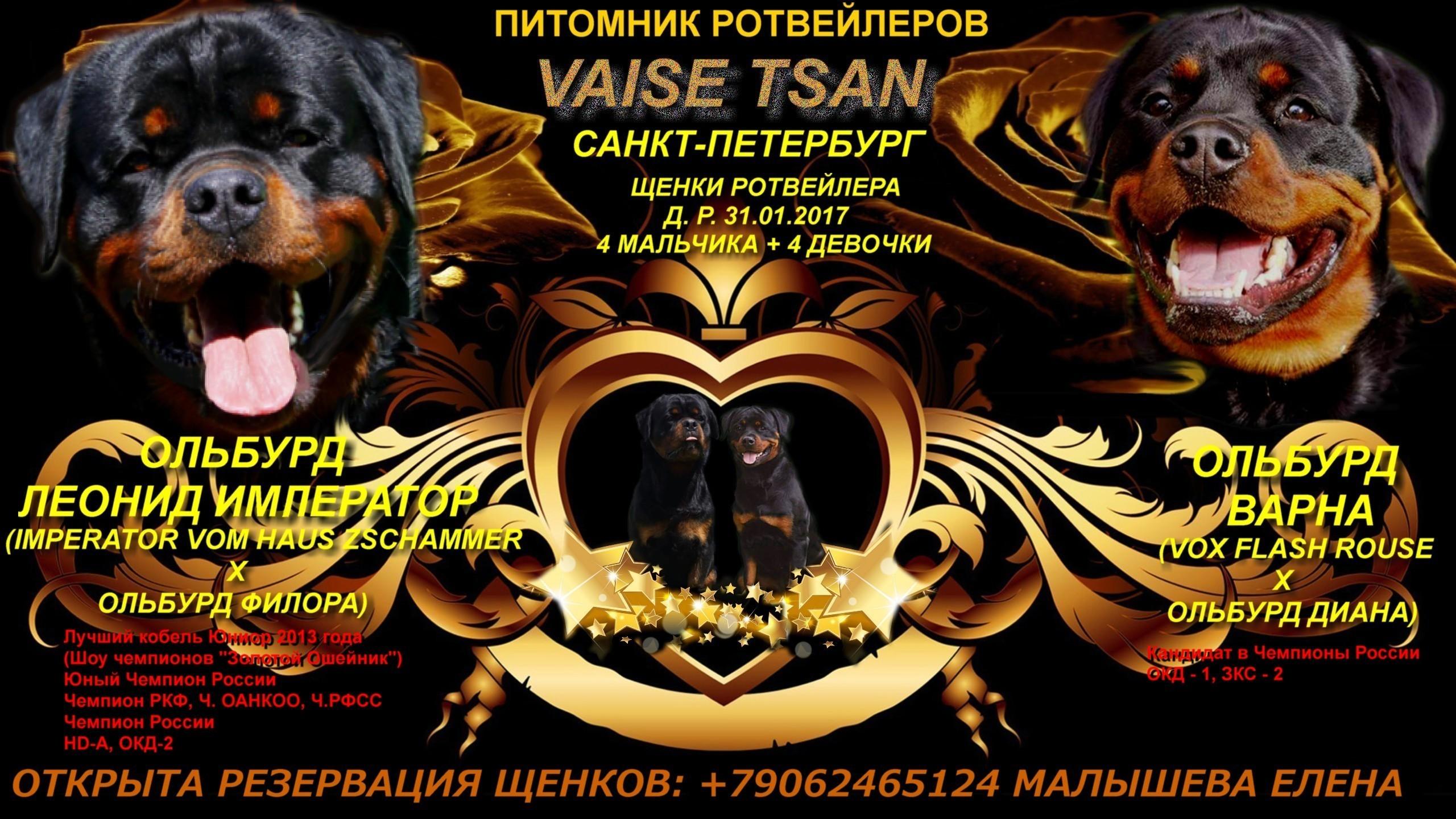 http://sf.uploads.ru/XjJPy.jpg