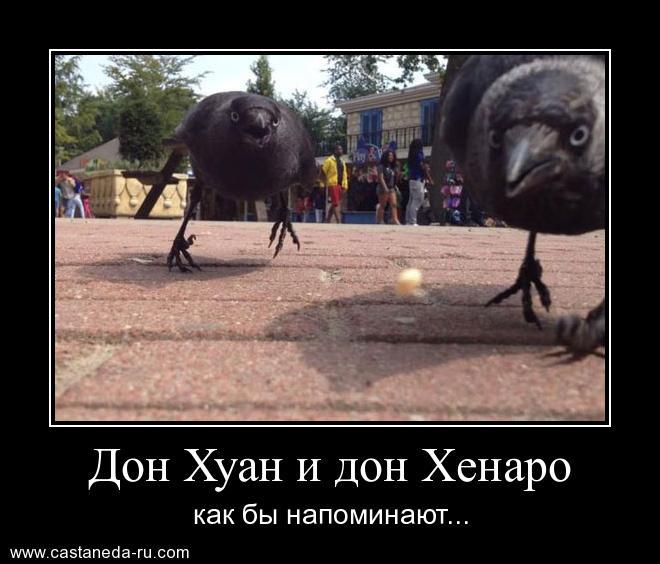 http://sf.uploads.ru/bLOKB.jpg