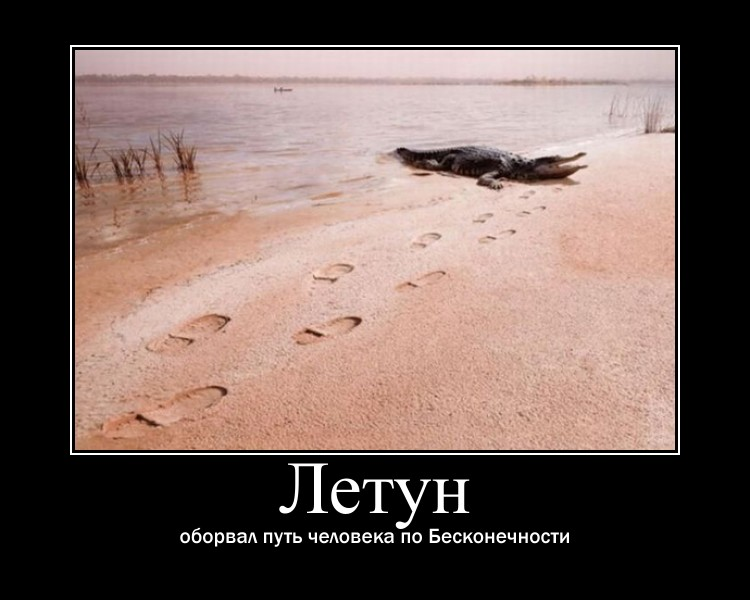http://sf.uploads.ru/iKahS.jpg