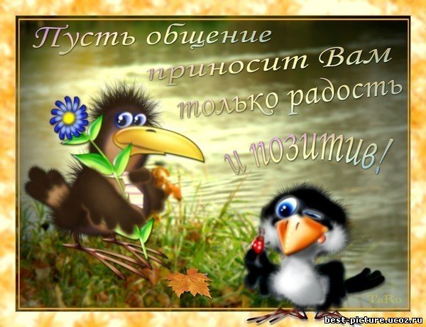 http://sf.uploads.ru/s5WnN.jpg