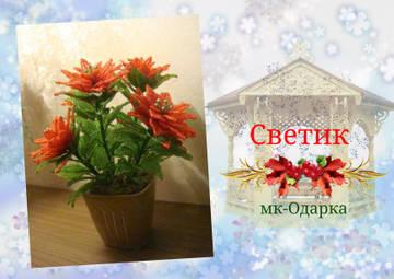 http://sf.uploads.ru/t/1ujCD.jpg