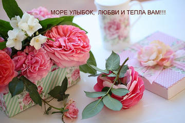 http://sf.uploads.ru/t/3nAPK.jpg