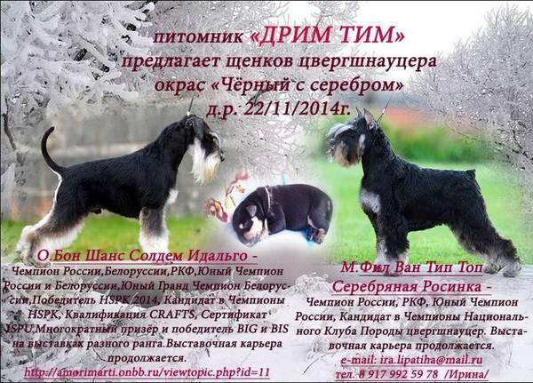http://sf.uploads.ru/t/624LG.jpg
