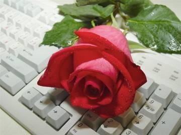 http://sf.uploads.ru/t/BI9wS.jpg