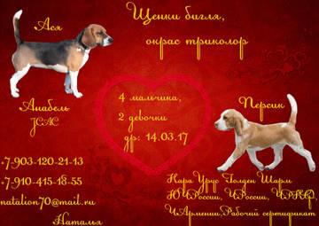 http://sf.uploads.ru/t/HXzjB.jpg