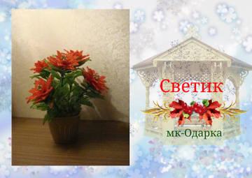 http://sf.uploads.ru/t/OVuqv.jpg
