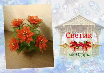 http://sf.uploads.ru/t/ScZ8y.jpg