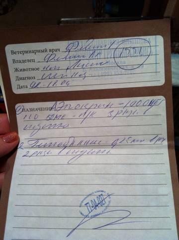 http://sf.uploads.ru/t/aktBv.jpg